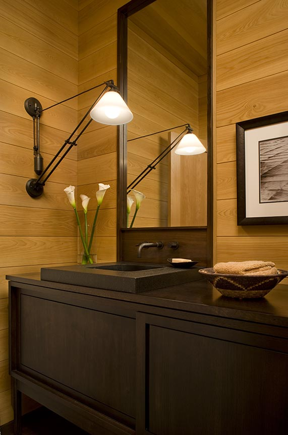 guest vanity-specialty lighting over sink